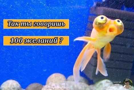 100 желаний и золотая рыбка