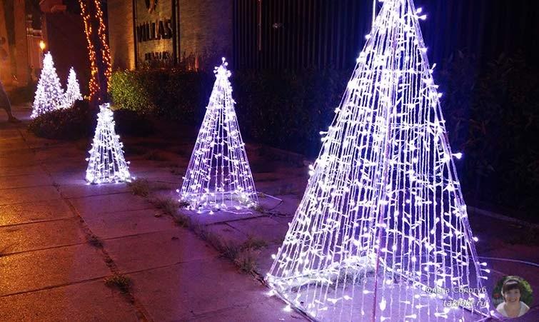 Яркие елки на улице