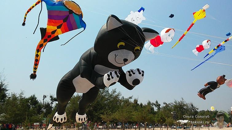 Фестиваль воздушных змеев Ча-Ам