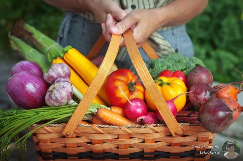 овощи и фрукты в карзинке