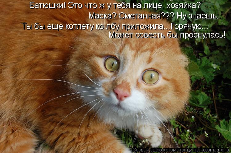 котомаска