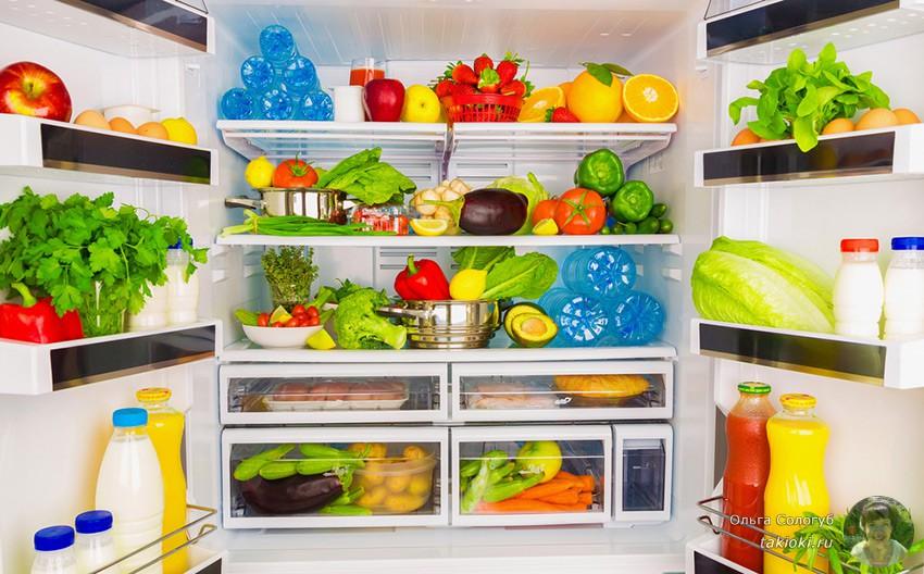 холодильник сыроеда