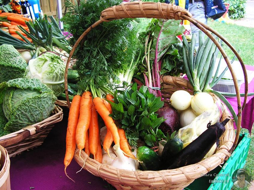 красивые овощи в корзинке