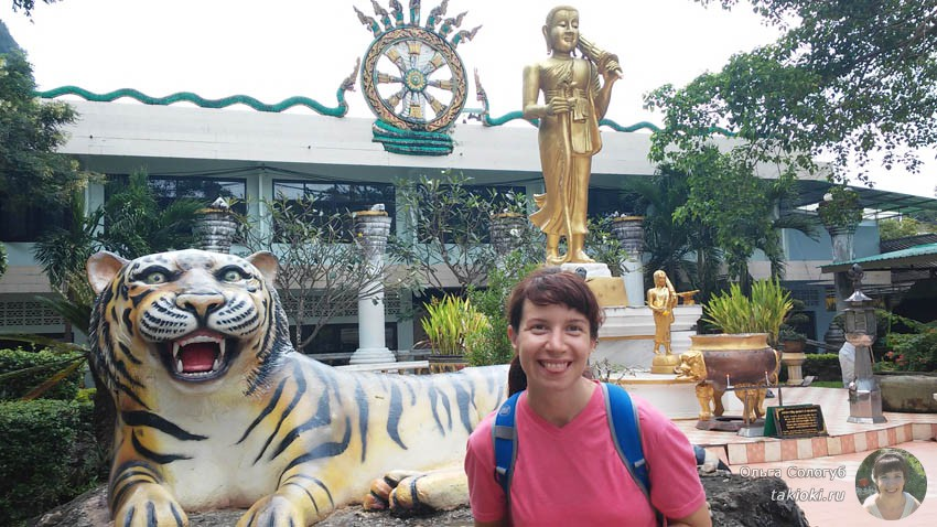 тигр и я