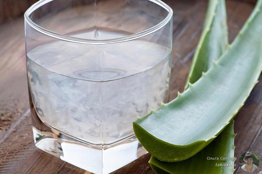 сок алоэ в домашних условиях