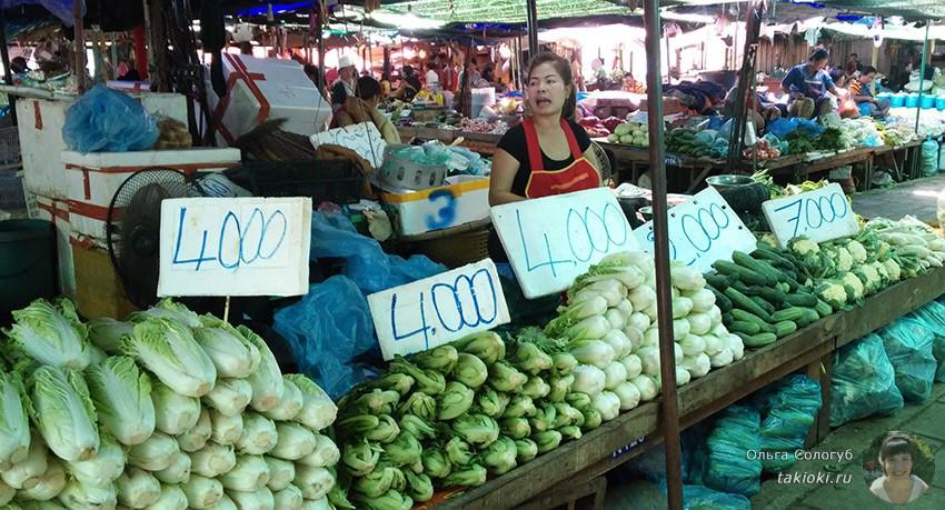 5-chto-poest-v-laose