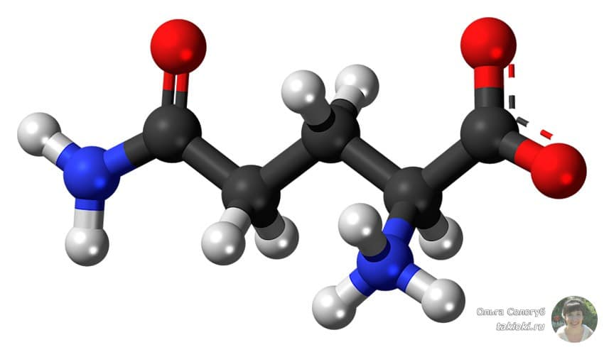 источник аминокислот в растительной пище в мясе