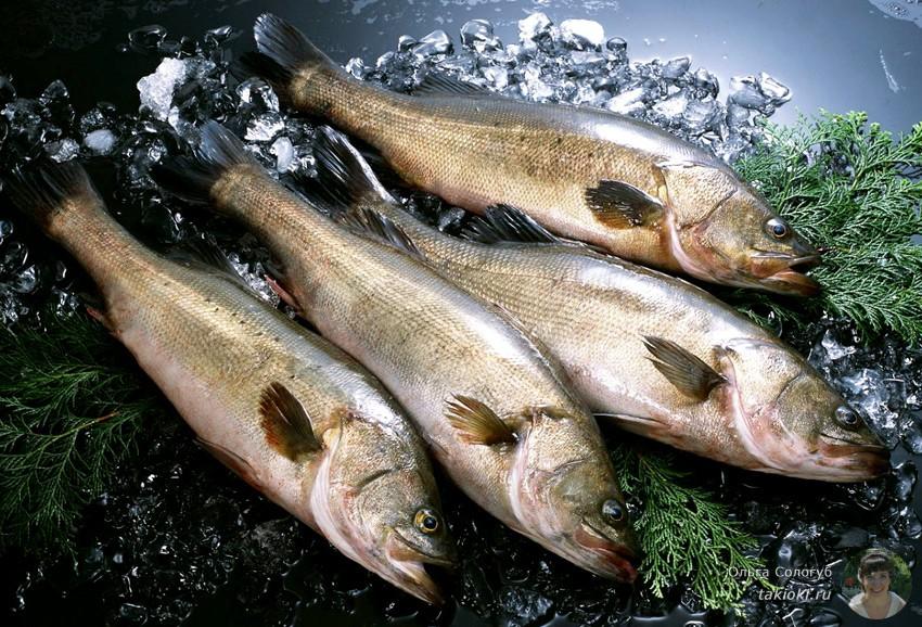 Вкусная ли рыба минтай