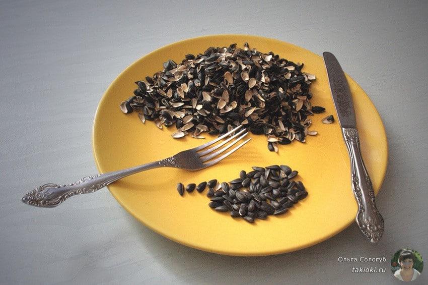 Можно ли грызть семечки
