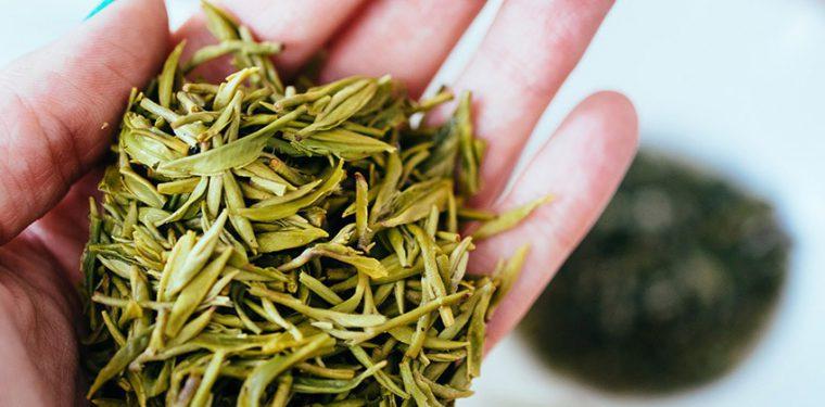 7 самых лучших видов чая, оказывающих пользу для здоровья