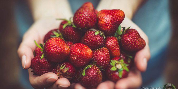 Топ-10 продуктов, насыщенных витамином С, которые продлят вашу жизнь