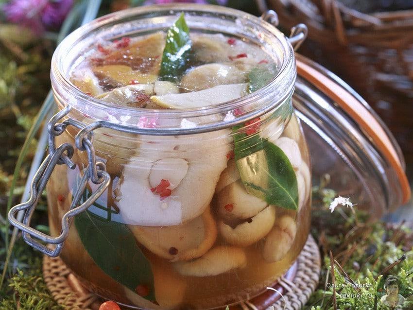 Пошаговый рецепт маринованных белых грибов в банках