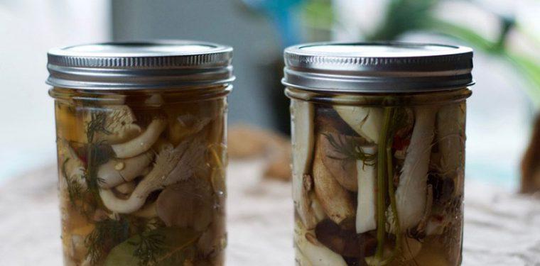 Как приготовить маринованные вешенки в домашних условиях – очень вкусные рецепты быстрого приготовления с фото