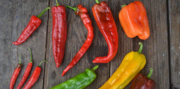 Хотите сжигать дополнительные калории — кушайте острый перец