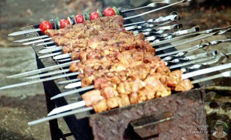 как правильно выбрать мясо на шашлык